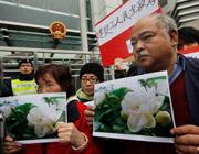 Жасминовую революцию в Китае никто не заметил