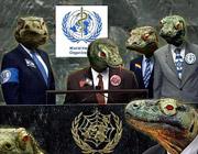 Комиссия ООН призывает легализовать проституцию, гомосексуализм и наркотики