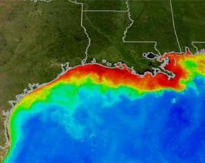 The red and yellow areas show the approximate boundaries of a Gulf of Mexico dead zone from several years ago. (Graphic courtesy of NASA/Goddard Space Flight Center Scientific Visualization Studio.)